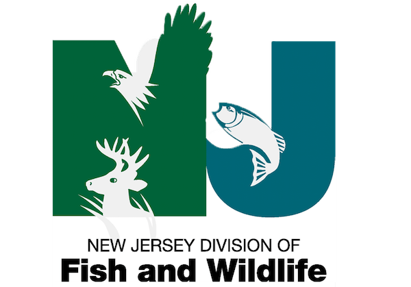 nj fish and wildlife
